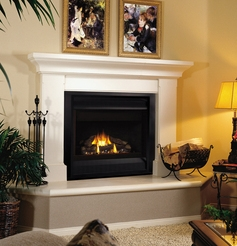 Fireplaceinsert.com, FMI Products Direct Vent Gas Fireplace Cottage
