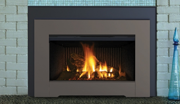 Gas Fireplace Insert DRI3030