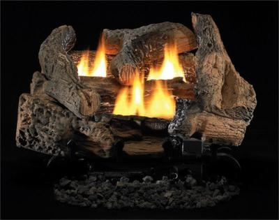 Fireplaceinsert.com, Vantage Hearth Vent Free Gas Burner Dual Flame