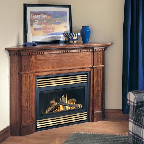Napoleon BGD33 Napoleon BGD33 Fireplace Napoleon BGD33