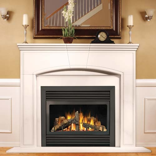Napoleon Gd33 Napoleon Gd33 Fireplace Napoleon Gd33 Gas Fireplace Gd33 Gas Fireplace