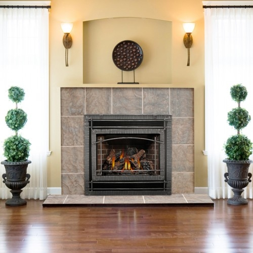 Napoleon GD70 Napoleon GD70 Direct Vent Fireplace