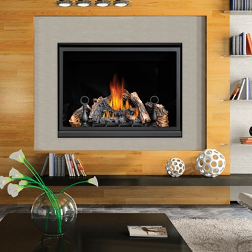 Napoleon Hd46 Napoleon Hd46 Gas Fireplace Hd46 Napoleon