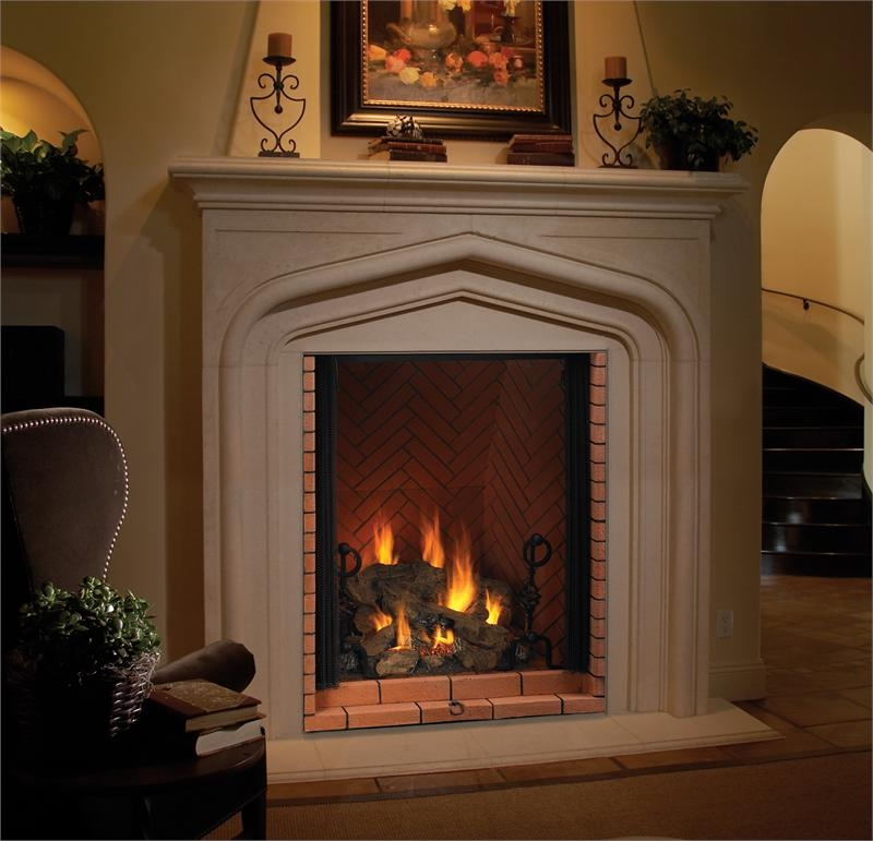 Vantage Hearth Direct Vent Gas Fireplace Premium Luxury
