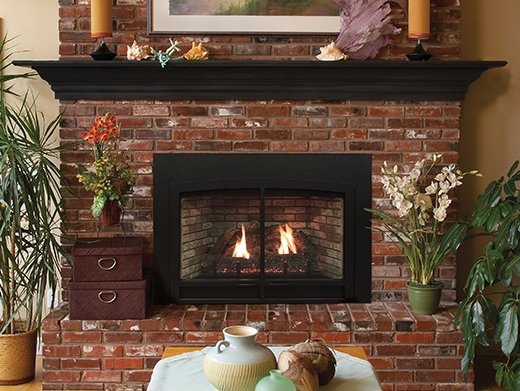 Awe Inspiring White Mountain Hearth By Empire Direct Vent Gas Fireplace Insert Innsbrook 26 Home Interior And Landscaping Staixmapetitesourisinfo